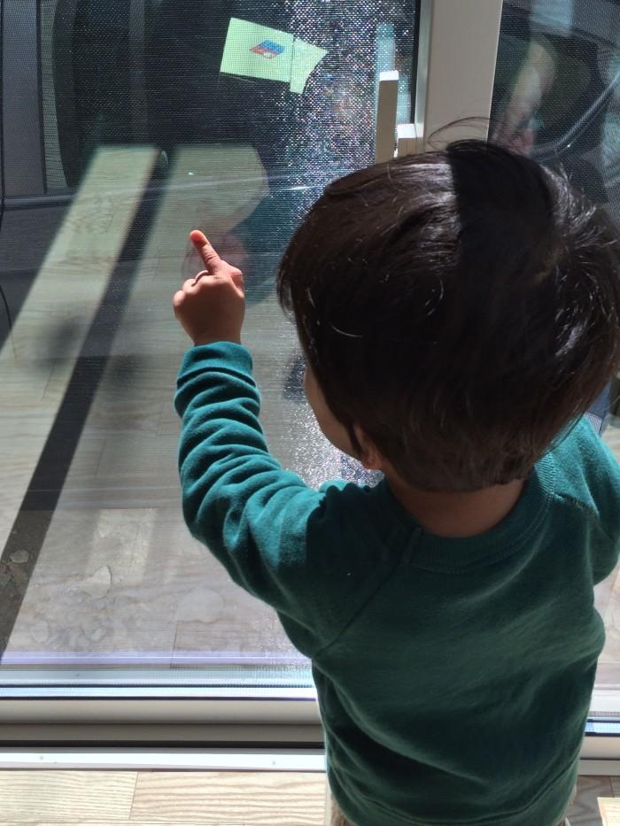 窓ガラスをチェックするせいちゃん