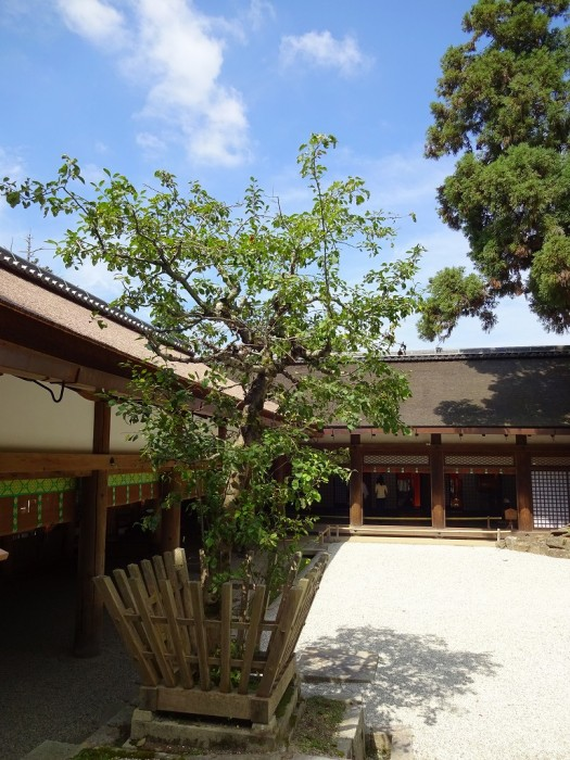 No.4:林檎の庭